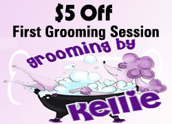 dog grooming coupon